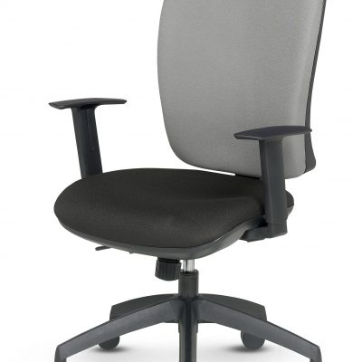 Touch - High Back Task Chair - Height Adjustable Arms